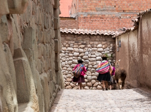 Two ladies and their llama on their way home
