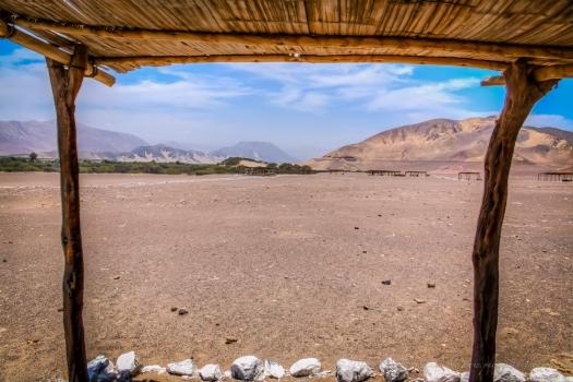 desert Nazca