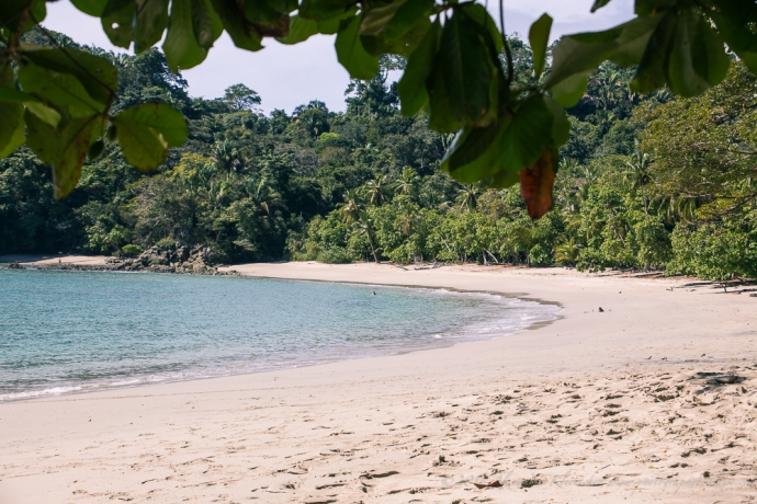 You have the beach for yourself midin the National park of Manual Antonio. On the way to the beach you can observe the Costa Rican wildlife.